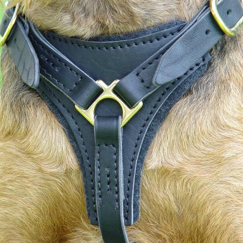 Tracking and Walking Leather Dog Harness