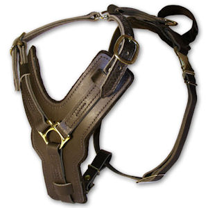 leather dog harness dog