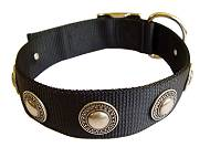 Fashion Nylon Dog Collar for Any Weather Walking